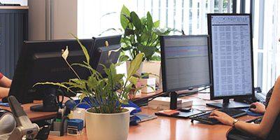 Helpdesk medewerkers op kantoor